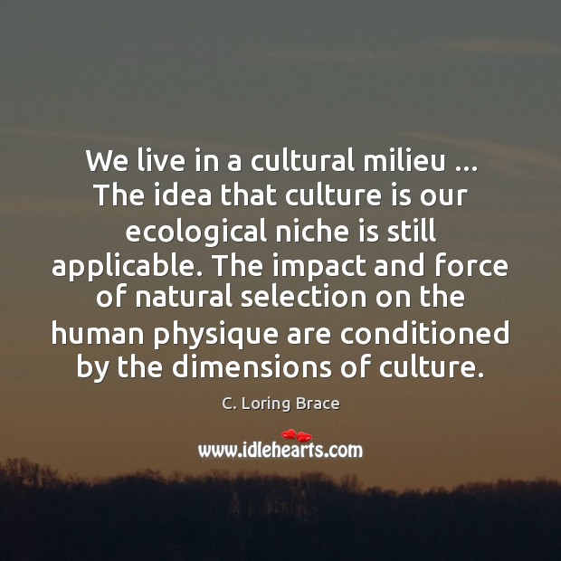 Image, We live in a cultural milieu … The idea that culture is our