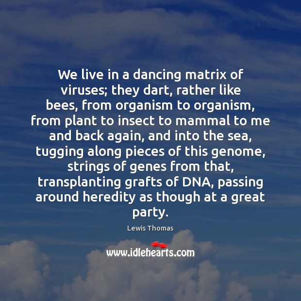 We live in a dancing matrix of viruses; they dart, rather like Image