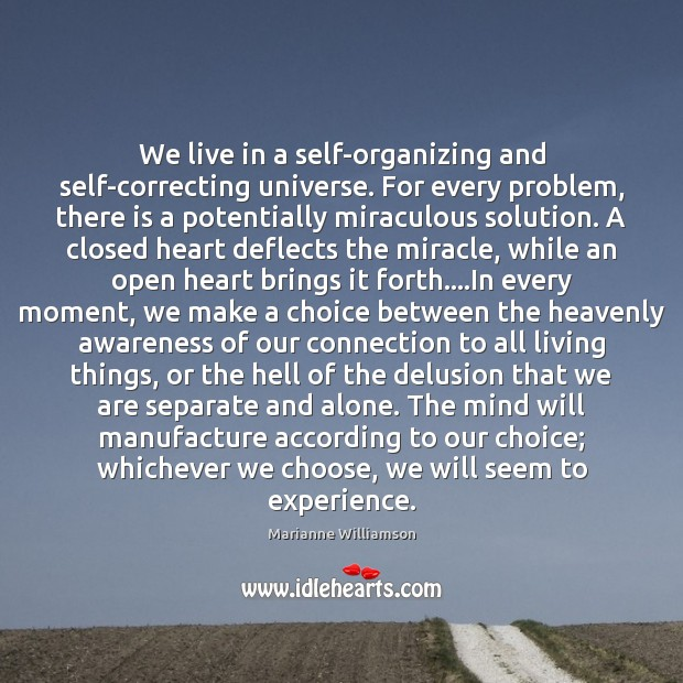 We live in a self-organizing and self-correcting universe. For every problem, there Marianne Williamson Picture Quote