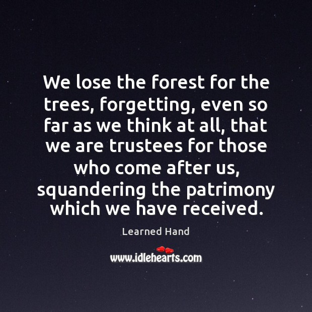 We lose the forest for the trees, forgetting, even so far as Image