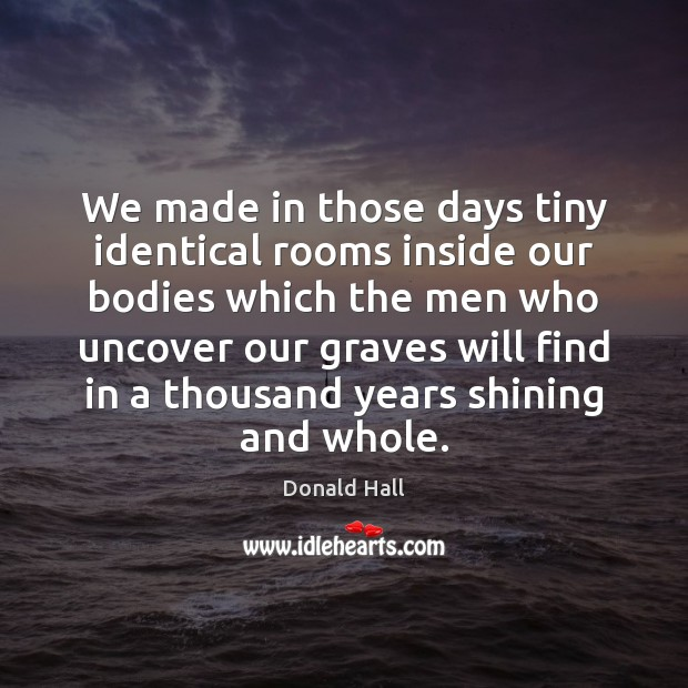 Image, We made in those days tiny identical rooms inside our bodies which