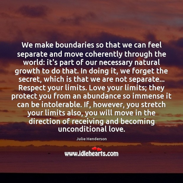 We make boundaries so that we can feel separate and move coherently Julie Henderson Picture Quote