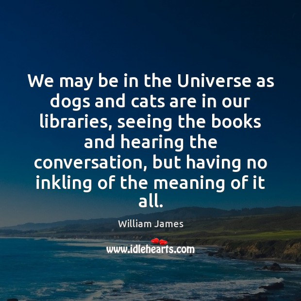 We may be in the Universe as dogs and cats are in Image