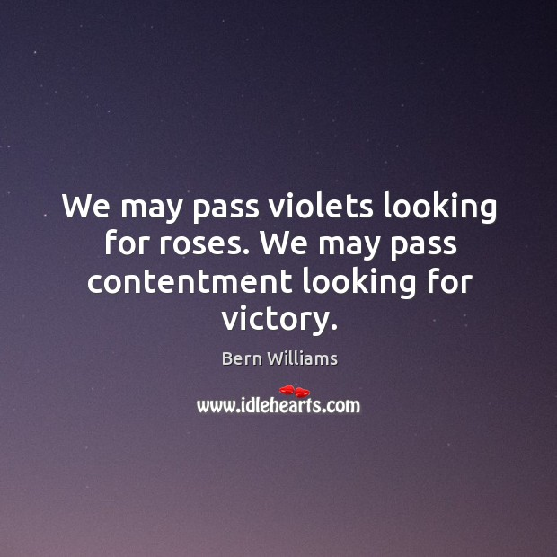 We may pass violets looking for roses. We may pass contentment looking for victory. Image