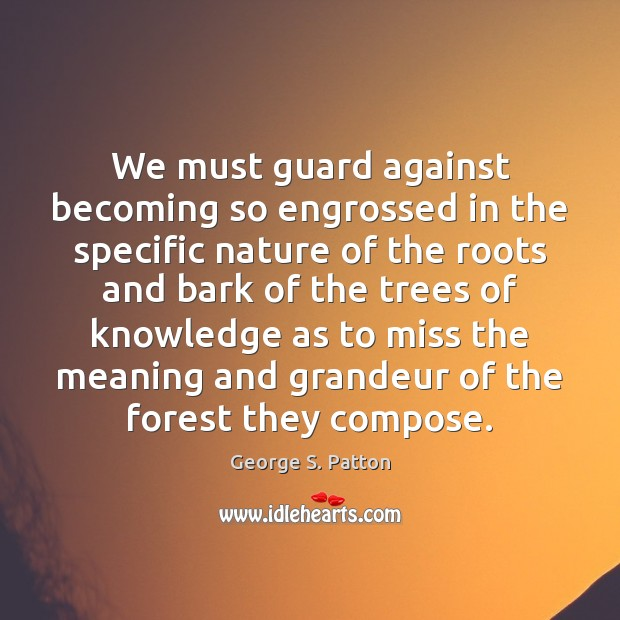 Image, We must guard against becoming so engrossed in the specific nature of