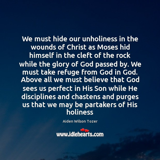 We must hide our unholiness in the wounds of Christ as Moses Aiden Wilson Tozer Picture Quote