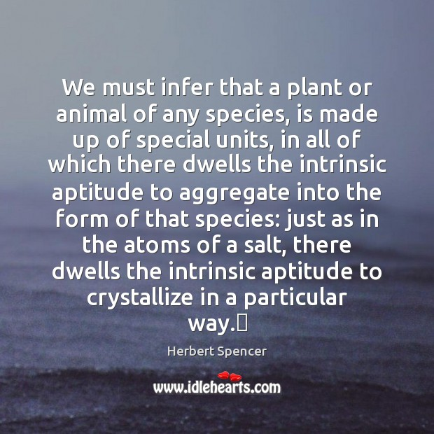Image, We must infer that a plant or animal of any species, is