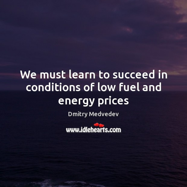 We must learn to succeed in conditions of low fuel and energy prices Image