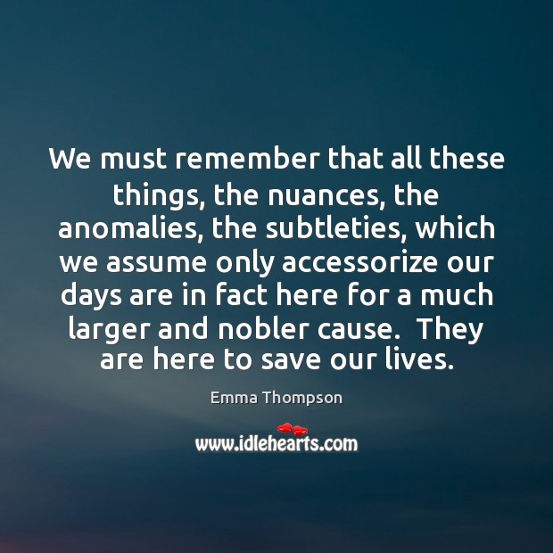 We must remember that all these things, the nuances, the anomalies, the Image
