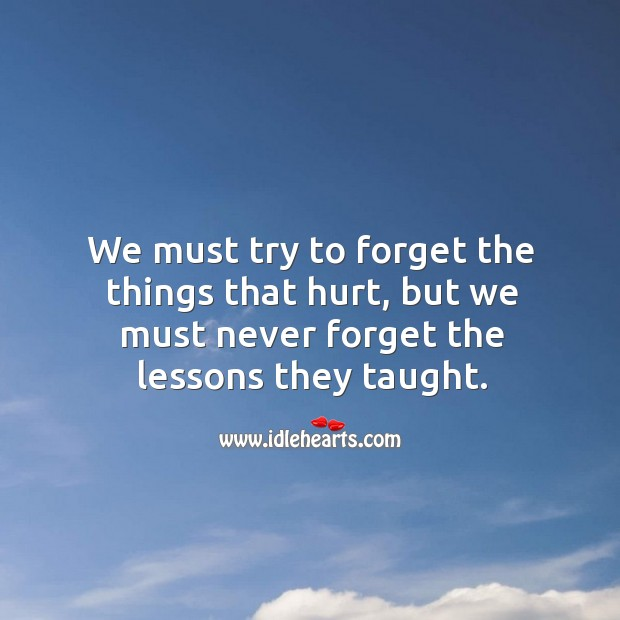Image, We must try to forget the things that hurt, but we must never forget the lessons they taught.
