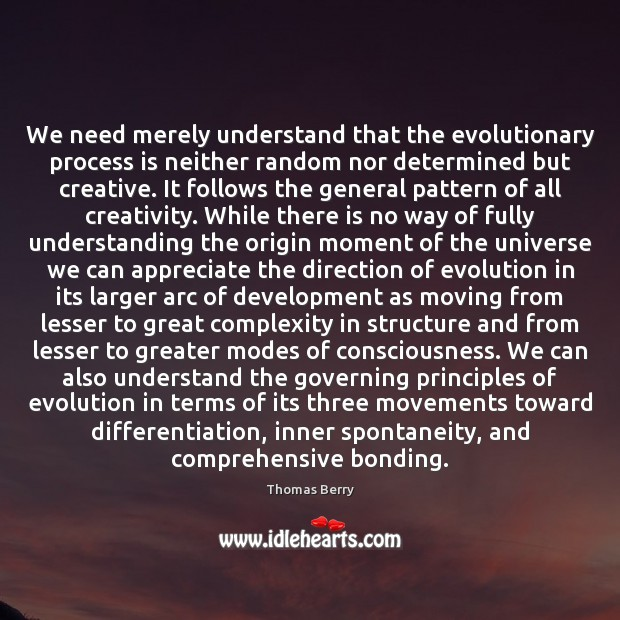 We need merely understand that the evolutionary process is neither random nor Thomas Berry Picture Quote