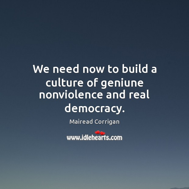 We need now to build a culture of geniune nonviolence and real democracy. Image