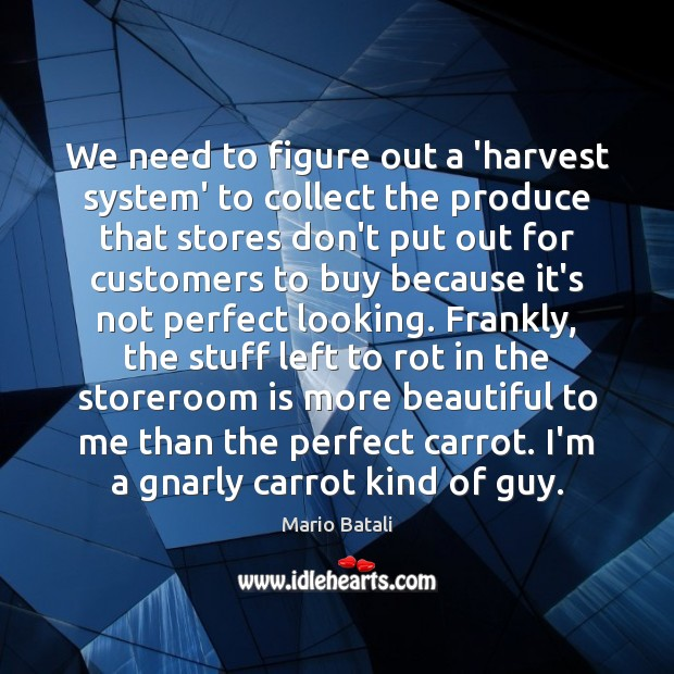 We need to figure out a 'harvest system' to collect the produce Mario Batali Picture Quote