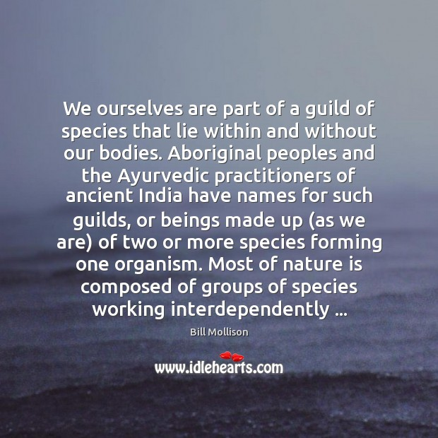 We ourselves are part of a guild of species that lie within Bill Mollison Picture Quote
