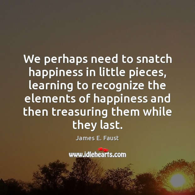 We perhaps need to snatch happiness in little pieces, learning to recognize James E. Faust Picture Quote