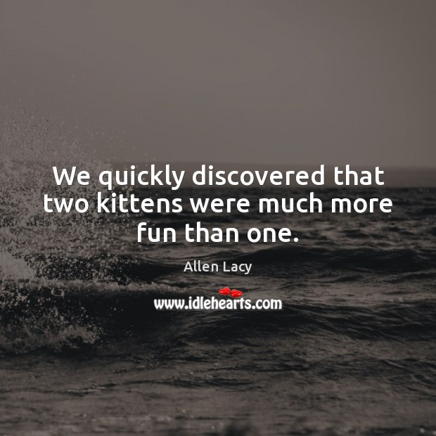 We quickly discovered that two kittens were much more fun than one. Allen Lacy Picture Quote