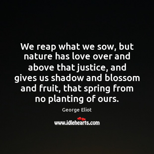We reap what we sow, but nature has love over and above Image