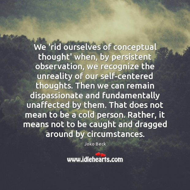 Image, We 'rid ourselves of conceptual thought' when, by persistent observation, we recognize