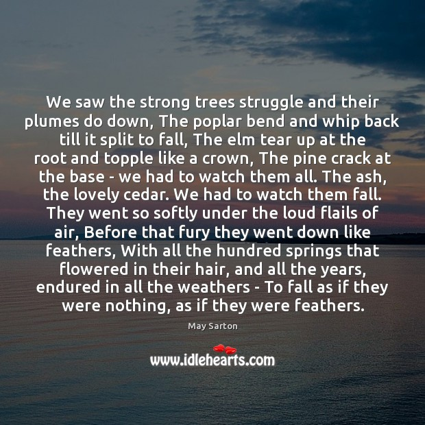 We saw the strong trees struggle and their plumes do down, The May Sarton Picture Quote