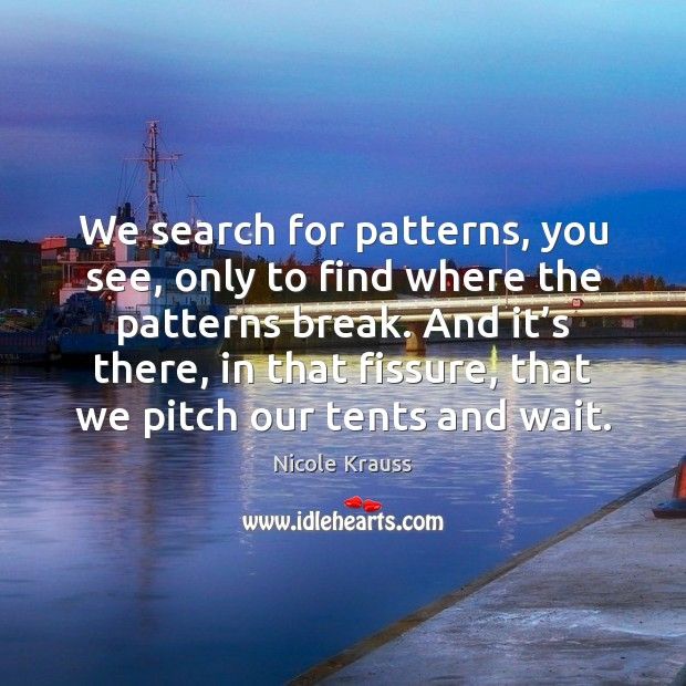 We search for patterns, you see, only to find where the patterns Nicole Krauss Picture Quote