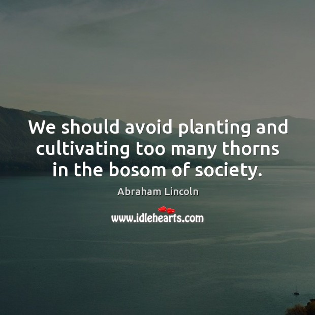 We should avoid planting and cultivating too many thorns in the bosom of society. Image