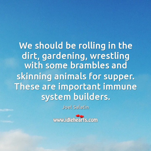 We should be rolling in the dirt, gardening, wrestling with some brambles Joel Salatin Picture Quote