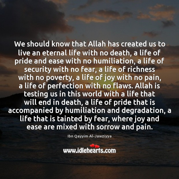 We should know that Allah has created us to live an eternal Image
