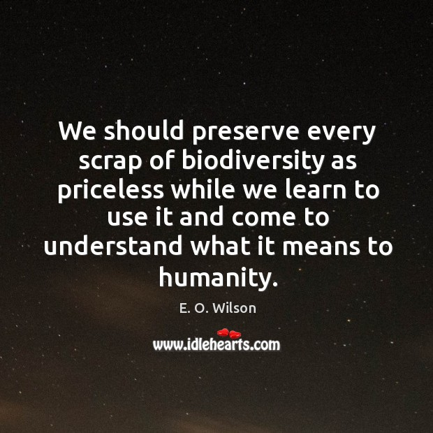 Image, We should preserve every scrap of biodiversity as priceless while we learn