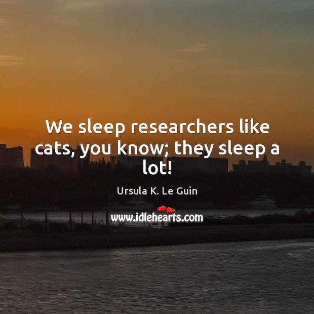 We sleep researchers like cats, you know; they sleep a lot! Image