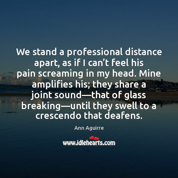 We stand a professional distance apart, as if I can't feel Ann Aguirre Picture Quote