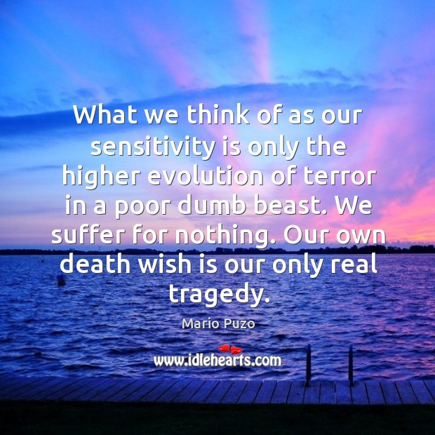 We suffer for nothing. Our own death wish is our only real tragedy. Mario Puzo Picture Quote