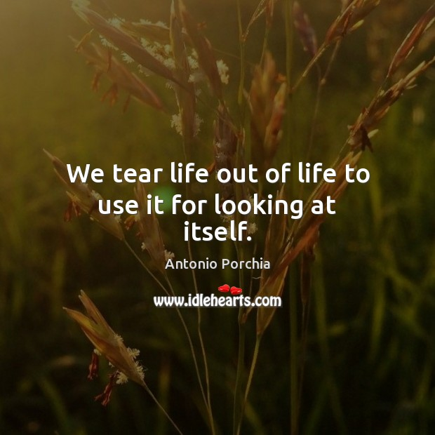 Image, We tear life out of life to use it for looking at itself.
