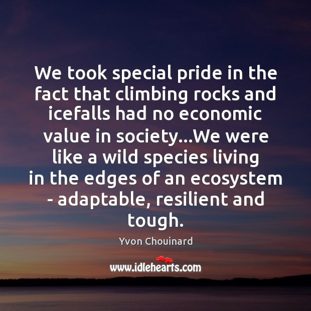 We took special pride in the fact that climbing rocks and icefalls Yvon Chouinard Picture Quote