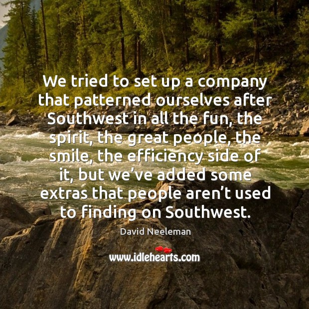 We tried to set up a company that patterned ourselves after southwest in all the fun David Neeleman Picture Quote