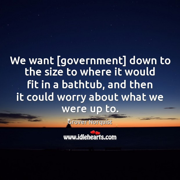 We want [government] down to the size to where it would fit Grover Norquist Picture Quote