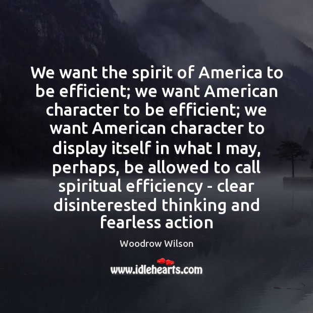 We want the spirit of America to be efficient; we want American Image