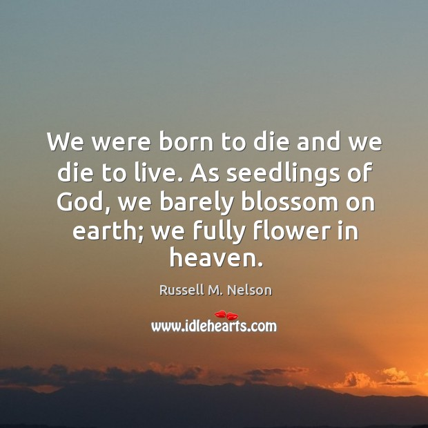 We were born to die and we die to live. As seedlings of God, we barely blossom on earth; we fully flower in heaven. Image