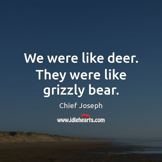 We were like deer. They were like grizzly bear. Chief Joseph Picture Quote