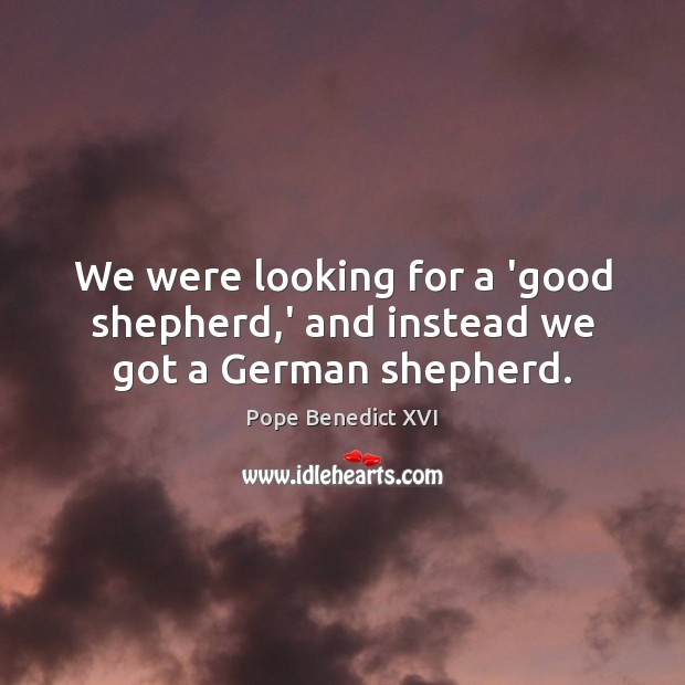 Image, We were looking for a 'good shepherd,' and instead we got a German shepherd.