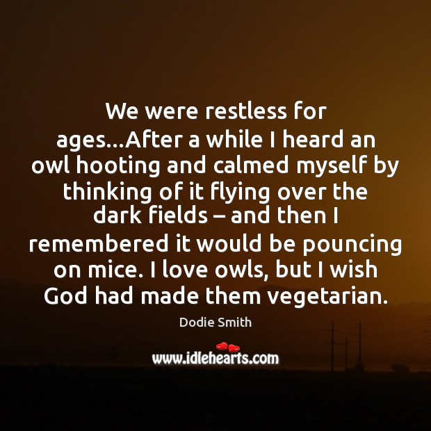 Image, We were restless for ages…After a while I heard an owl