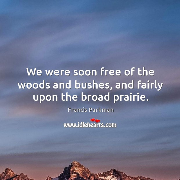 Image, We were soon free of the woods and bushes, and fairly upon the broad prairie.