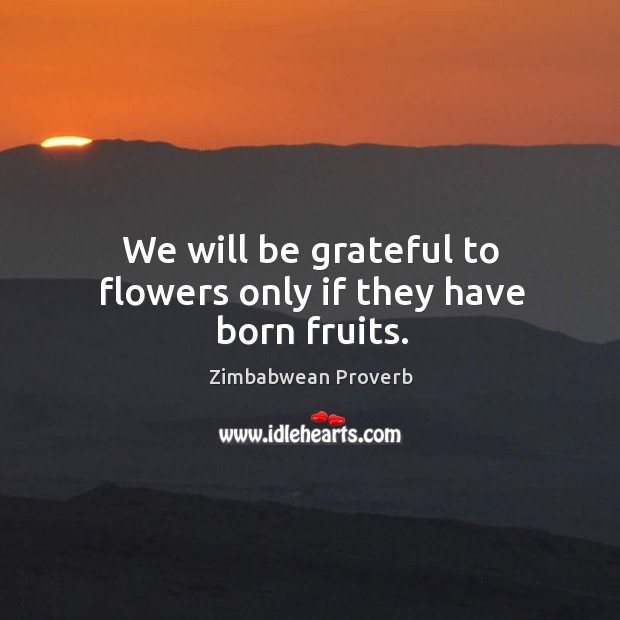 We will be grateful to flowers only if they have born fruits. Zimbabwean Proverbs Image
