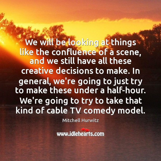 We will be looking at things like the confluence of a scene, Mitchell Hurwitz Picture Quote
