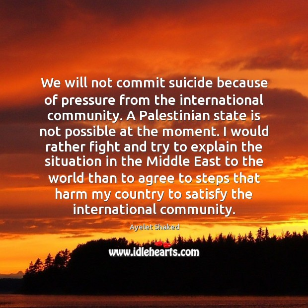 Image, We will not commit suicide because of pressure from the international community.