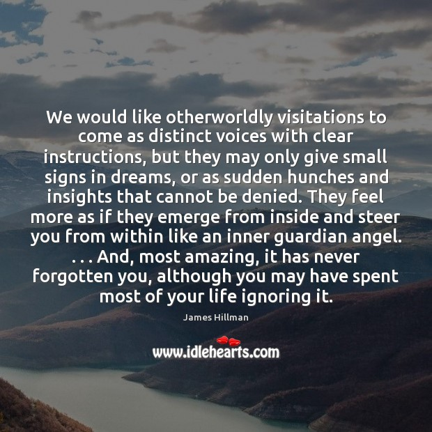 We would like otherworldly visitations to come as distinct voices with clear James Hillman Picture Quote