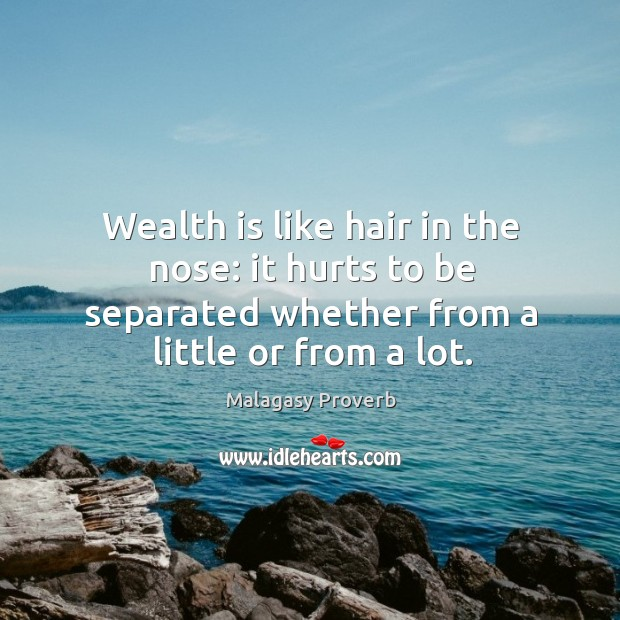 Image, Wealth is like hair in the nose: it hurts to be separated