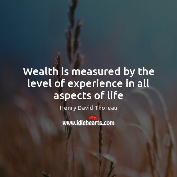 Wealth is measured by the level of experience in all aspects of life Wealth Quotes Image
