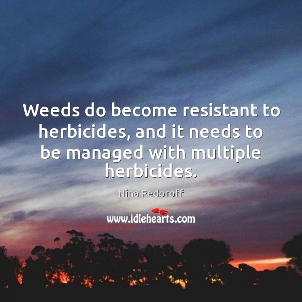 Weeds do become resistant to herbicides, and it needs to be managed Image