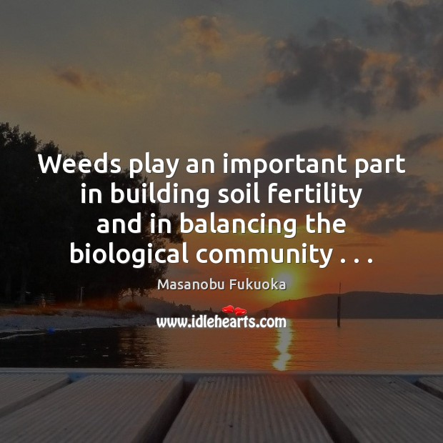 Weeds play an important part in building soil fertility and in balancing Masanobu Fukuoka Picture Quote