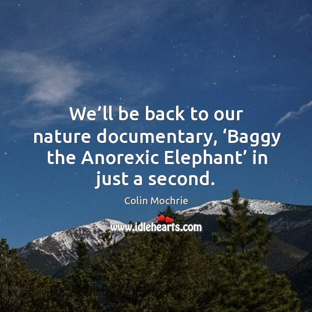 We'll be back to our nature documentary, 'baggy the anorexic elephant' in just a second. Image